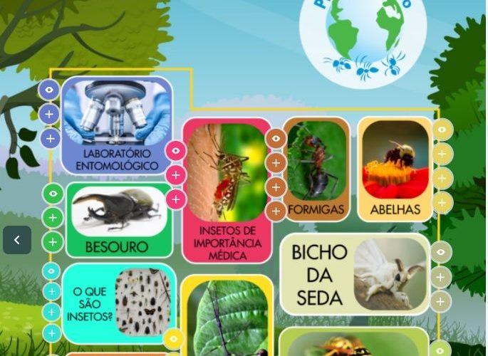 Público poderá visitar de forma virtual o único zoológico de insetos do Brasil